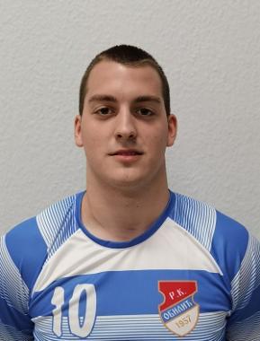 Никола Савић